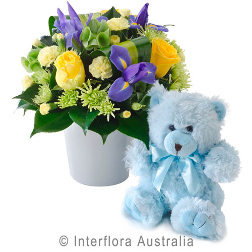 blues and yellow arrangement plus teddy..$80