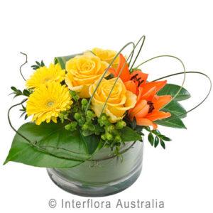 low arrangemnt in vase..$65